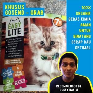 Info Kucing Russian Blue Katalog.or.id