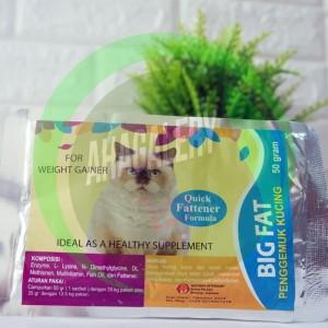 Katalog Kucing Himalaya Katalog.or.id