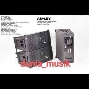 Harga speaker line array ashley pro db110 original jual | HARGALOKA.COM