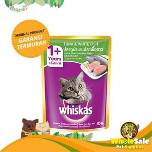 Info Kucing Bengal Katalog.or.id