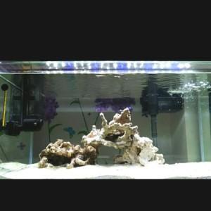 Harga Lampu Led Yamano P1000 For Aquarium Katalog.or.id