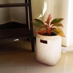 Harga keranjang serbaguna anyaman pandan cover pot | HARGALOKA.COM