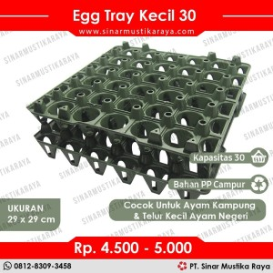 Harga egg tray ayam 30 butir tempat telur ayam kampung petelur | HARGALOKA.COM