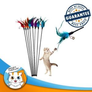 Harga Mainan Kucing Tongkat Pancingan Katalog.or.id
