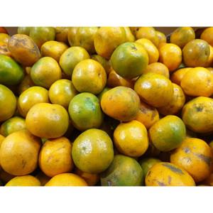 Harga buah jeruk medan super per kg   | HARGALOKA.COM