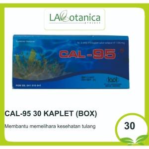 Harga cal 95 30 kaplet box   HARGALOKA.COM