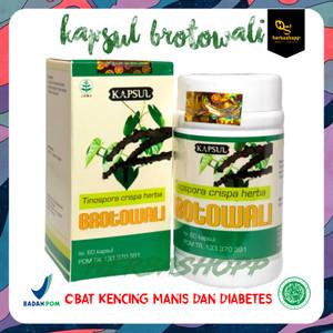 Harga kapsul brotowali obat gula darah kencing manis gatal kulit amp | HARGALOKA.COM