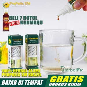 Harga walatra propolis sm   obat perontok karang gigi penghilang bau | HARGALOKA.COM