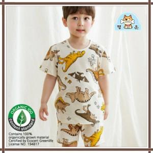 Harga baju anak laki korea baju anak bahan organik dinosaurus sangtae     HARGALOKA.COM