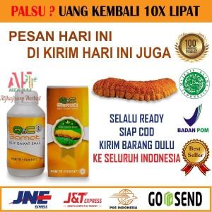 Harga sale q n c jelly gamat asli  gelly gamat qnc  jely gamet  gnc  | HARGALOKA.COM